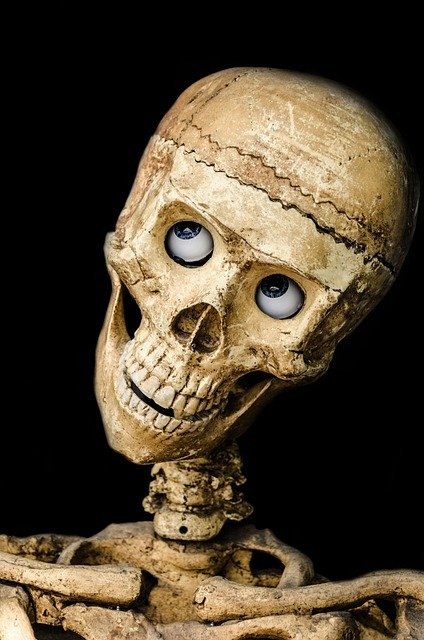 skull-219794_640