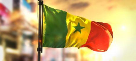 Bandiera Senegal.jpg